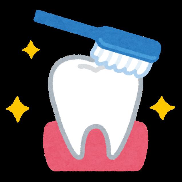 歯ブラシと綺麗な歯のイラスト