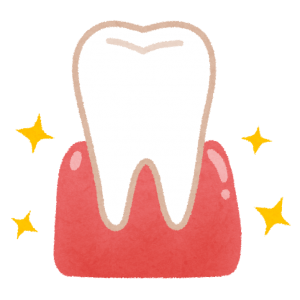 健康な歯茎のイラスト