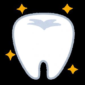 健康的で綺麗な歯のイラスト