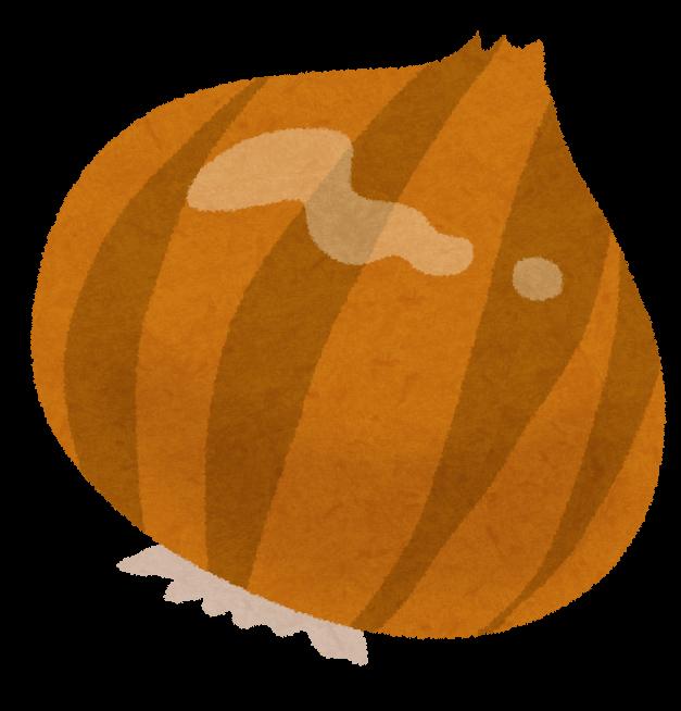 タマネギのイラスト